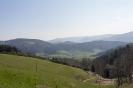 Panoramawanderung Fischerbach 03.2019_2